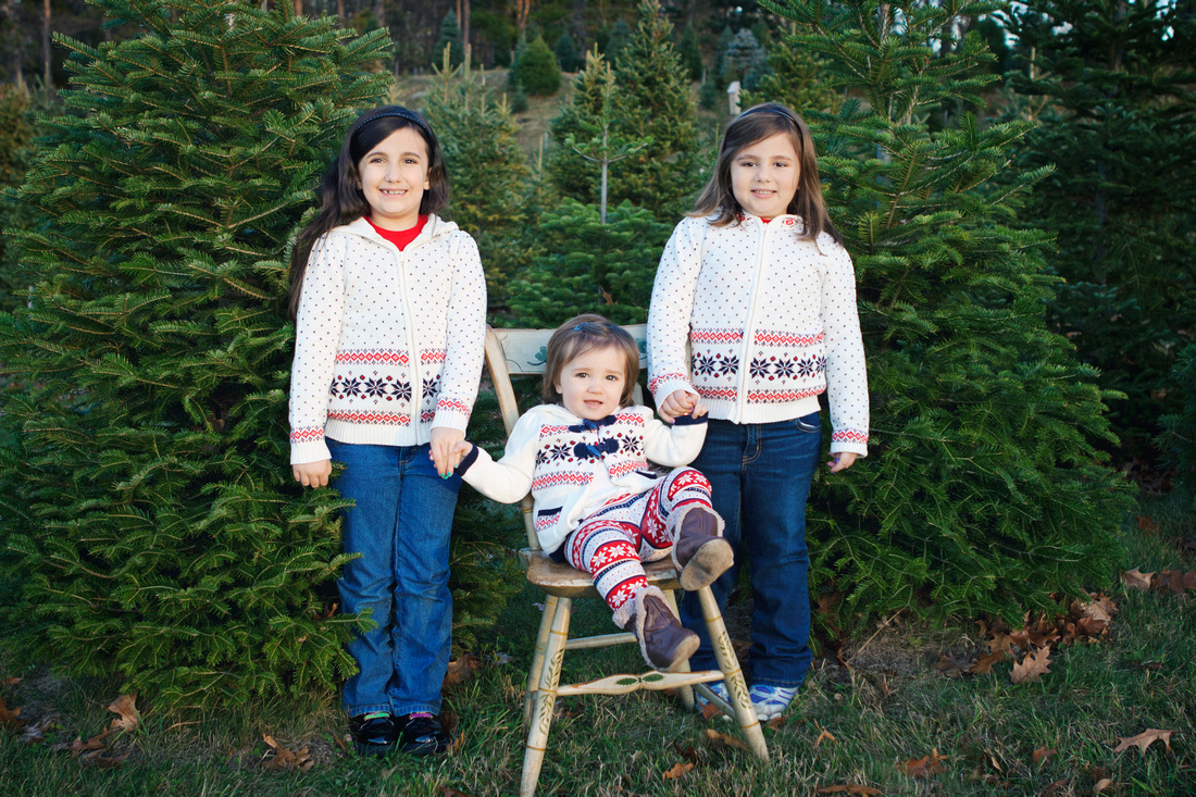 Holiday Portrait Session