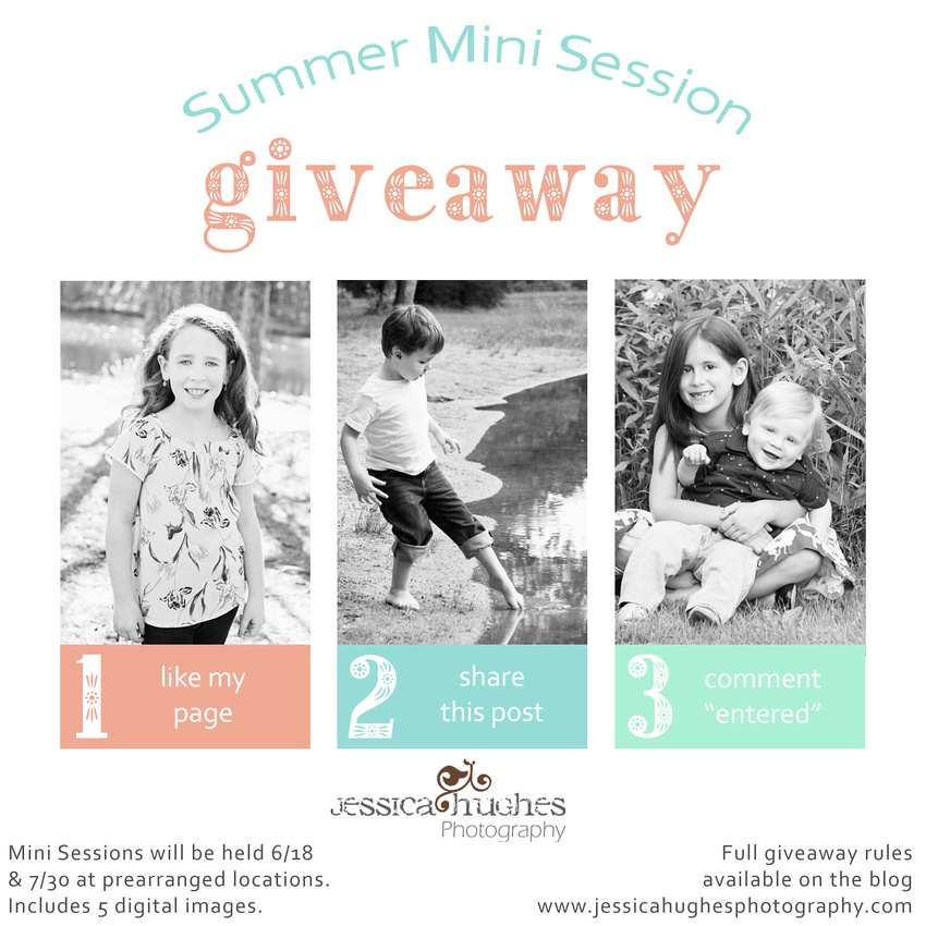 Summer Mini Session Giveaway
