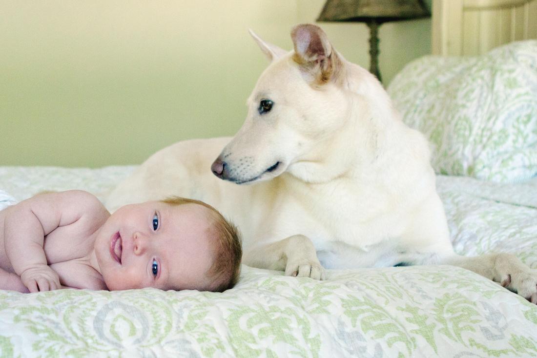 Charlton, MA Newborn Photographer