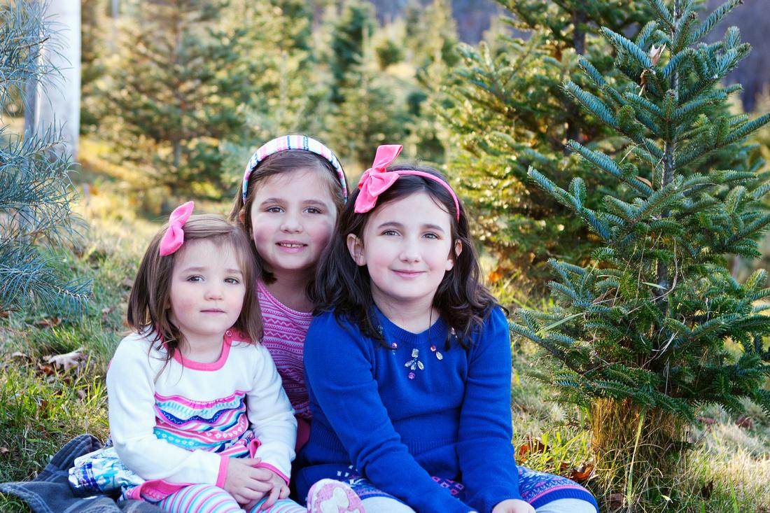 Auburn, MA family photographer