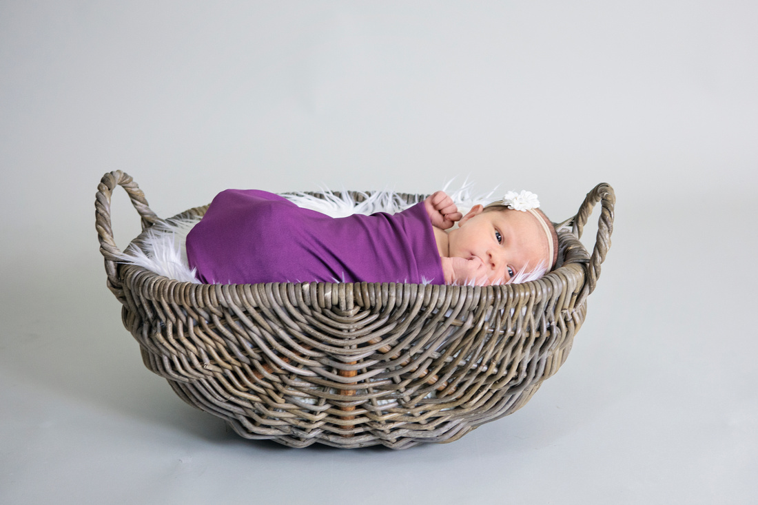 Marlborough Newborn Photographer