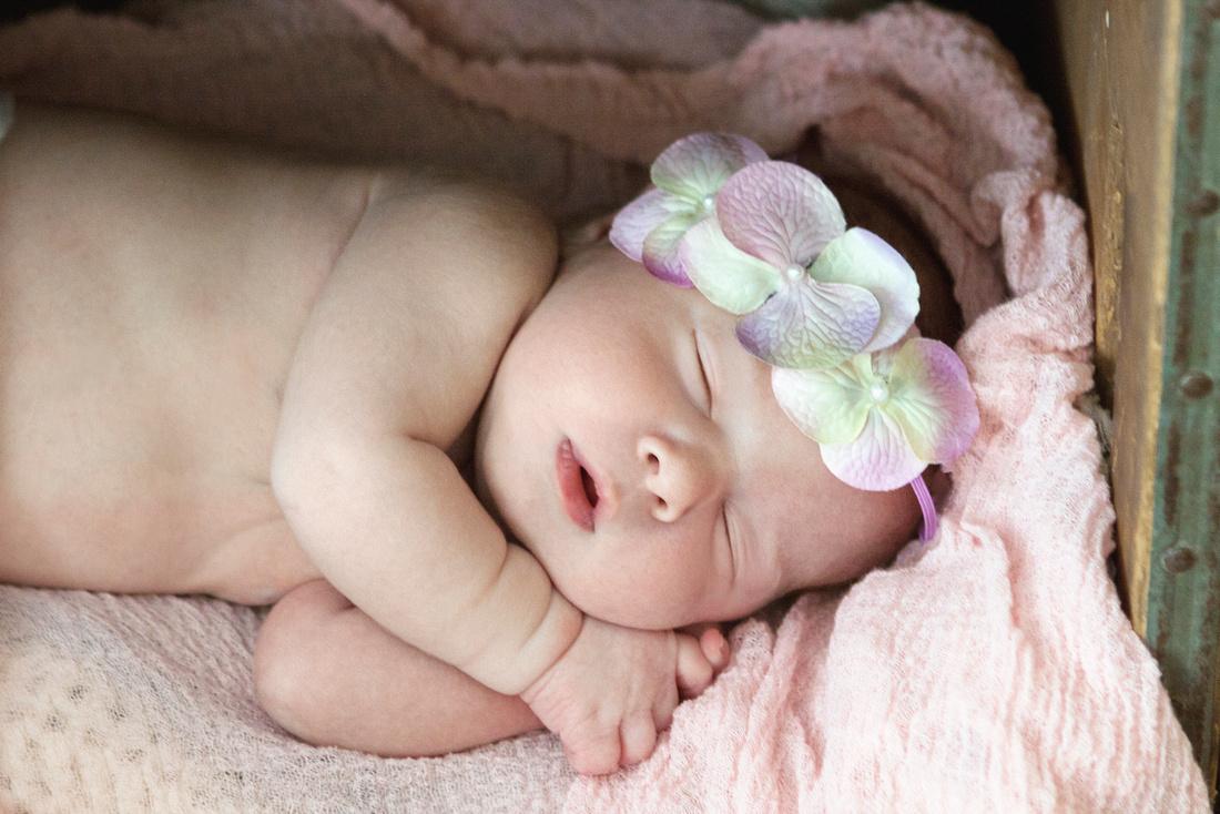 Auburn, Massachusetts Newborn Photographer